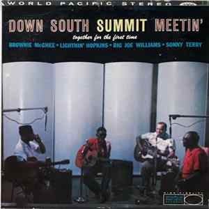 Brownie McGhee • Lightnin' Hopkins • Big Joe Williams • Sonny Terry - Down South Summit Meetin' FLAC